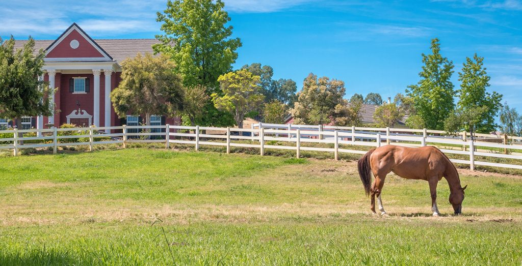 horse-property-is-a-good-option